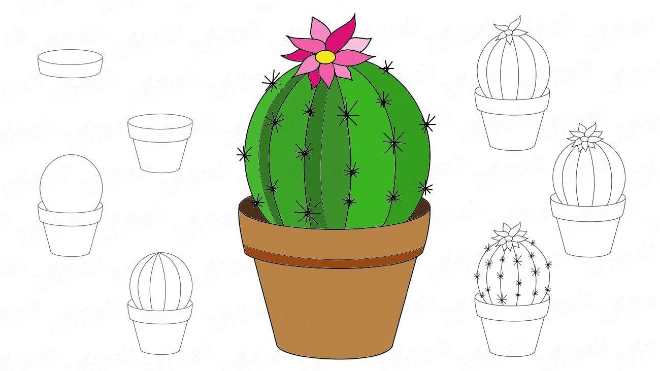 Pin On Draw Natures Botanicals