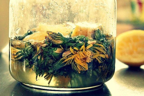 Dandelion Wine Recipe The Mistake You Don T Want To Make Recipe Dandelion Wine Wine Recipes Homemade Wine Recipes