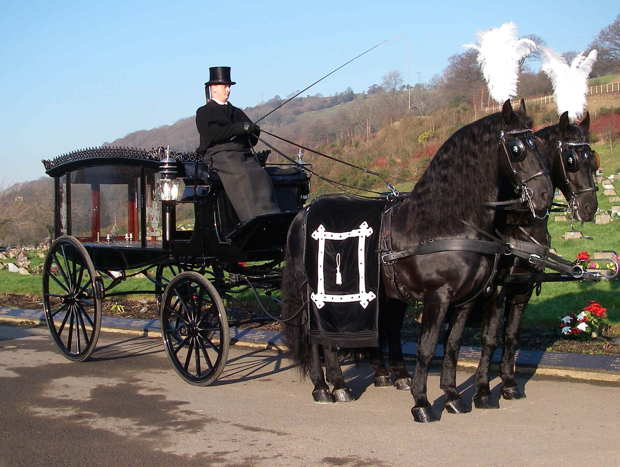 Horse drawn funerals horses pictures with horses horse