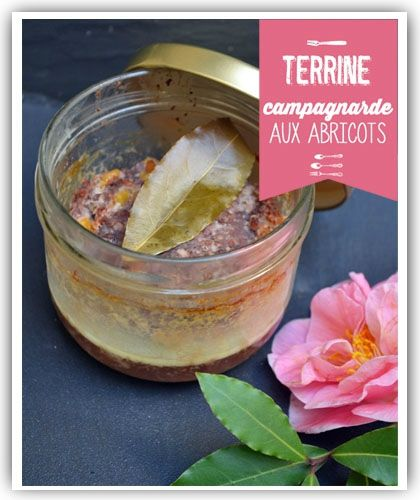Terrine campagnarde aux abricots
