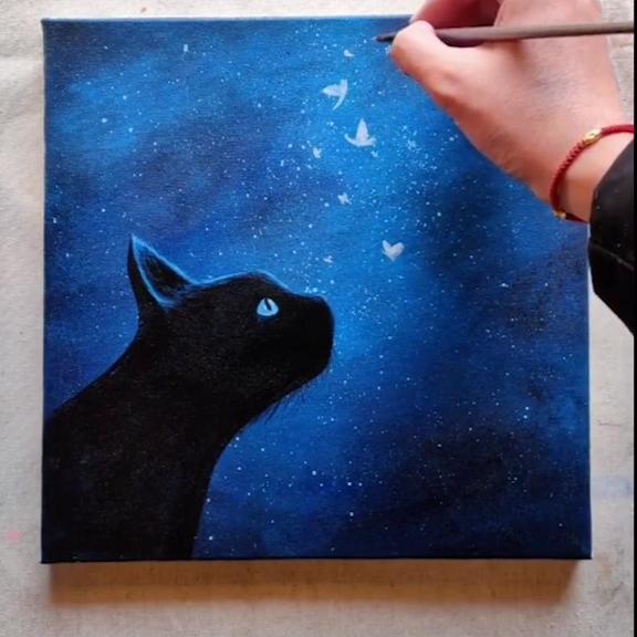 Photo of Cat Watching The Night Sky