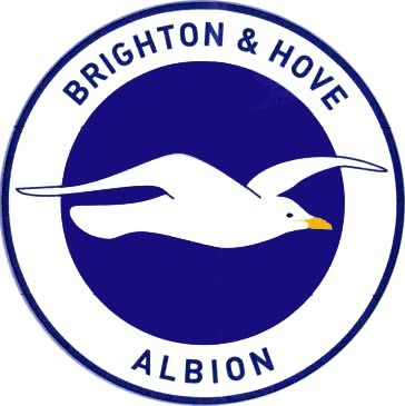 pin on brighton and hove albion