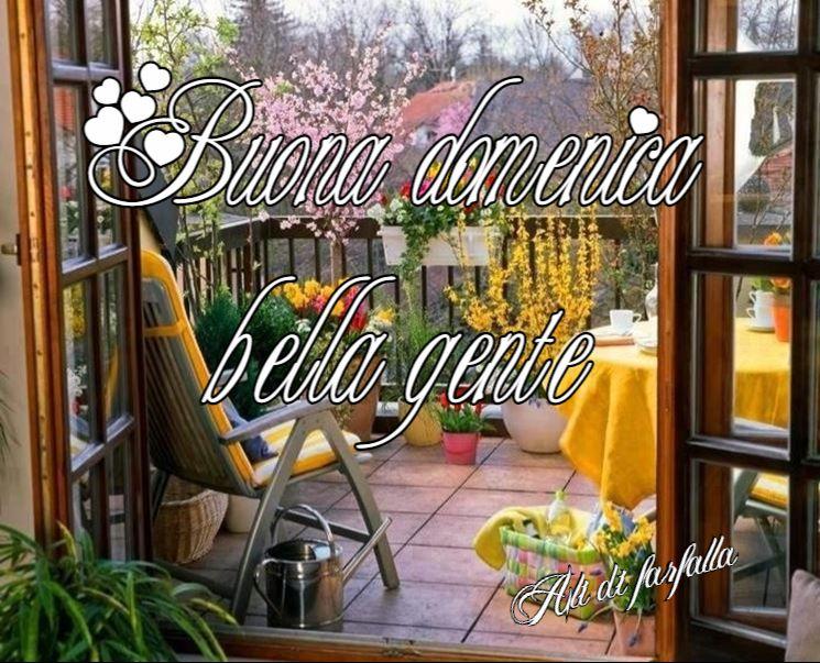 buona domenica bella gente terrazzo fiorito | Ali di farfalla ...