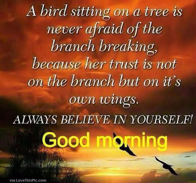 Good Morning Always Believe In Yourself … | Have a great Day! | Good …