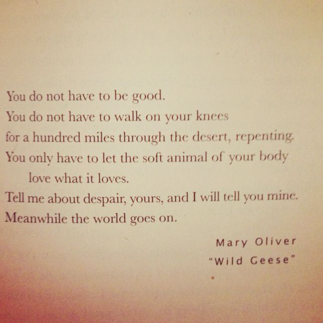 """Mary Oliver Love Quotes: """"Tell Me About Despair, Yours, And I Will Tell You About"""