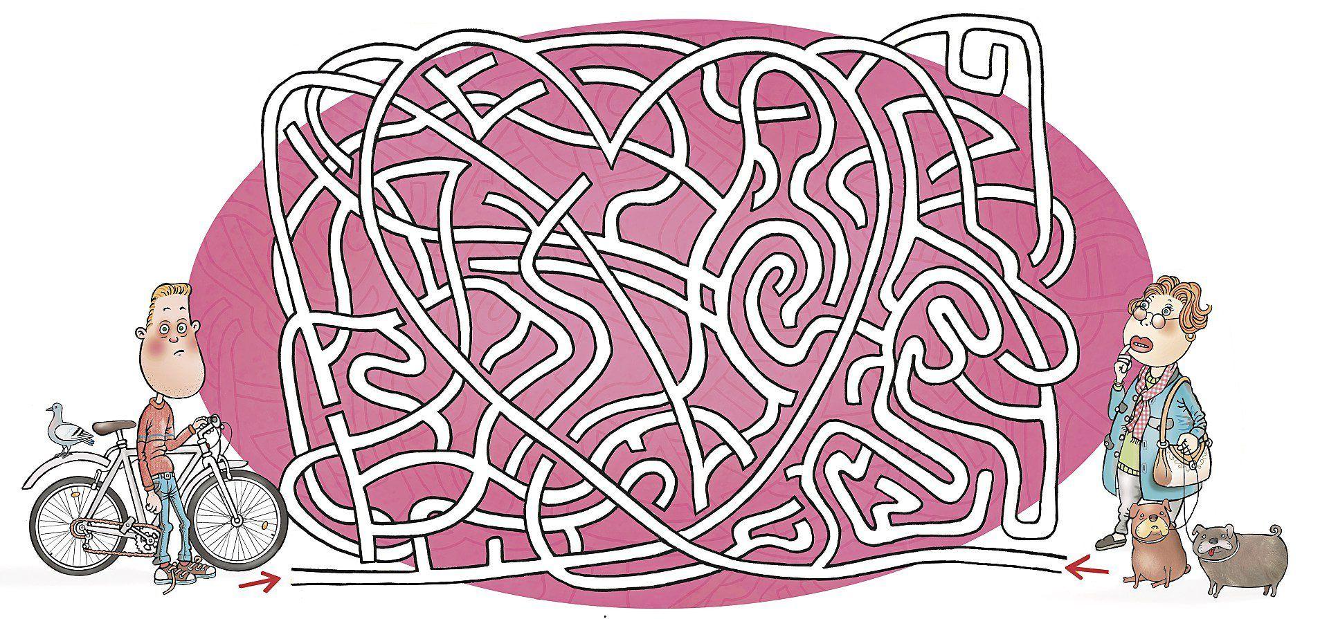 Kuinka pitkä on ruuansulatuskanava ja miten paljon ihmisen painosta on bakteereja? Testaa, miten pärjäisit koulubiologiassa