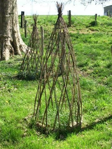 Afficher l 39 image d 39 origine osier pinterest osier vignes et support - Support plantes grimpantes ...