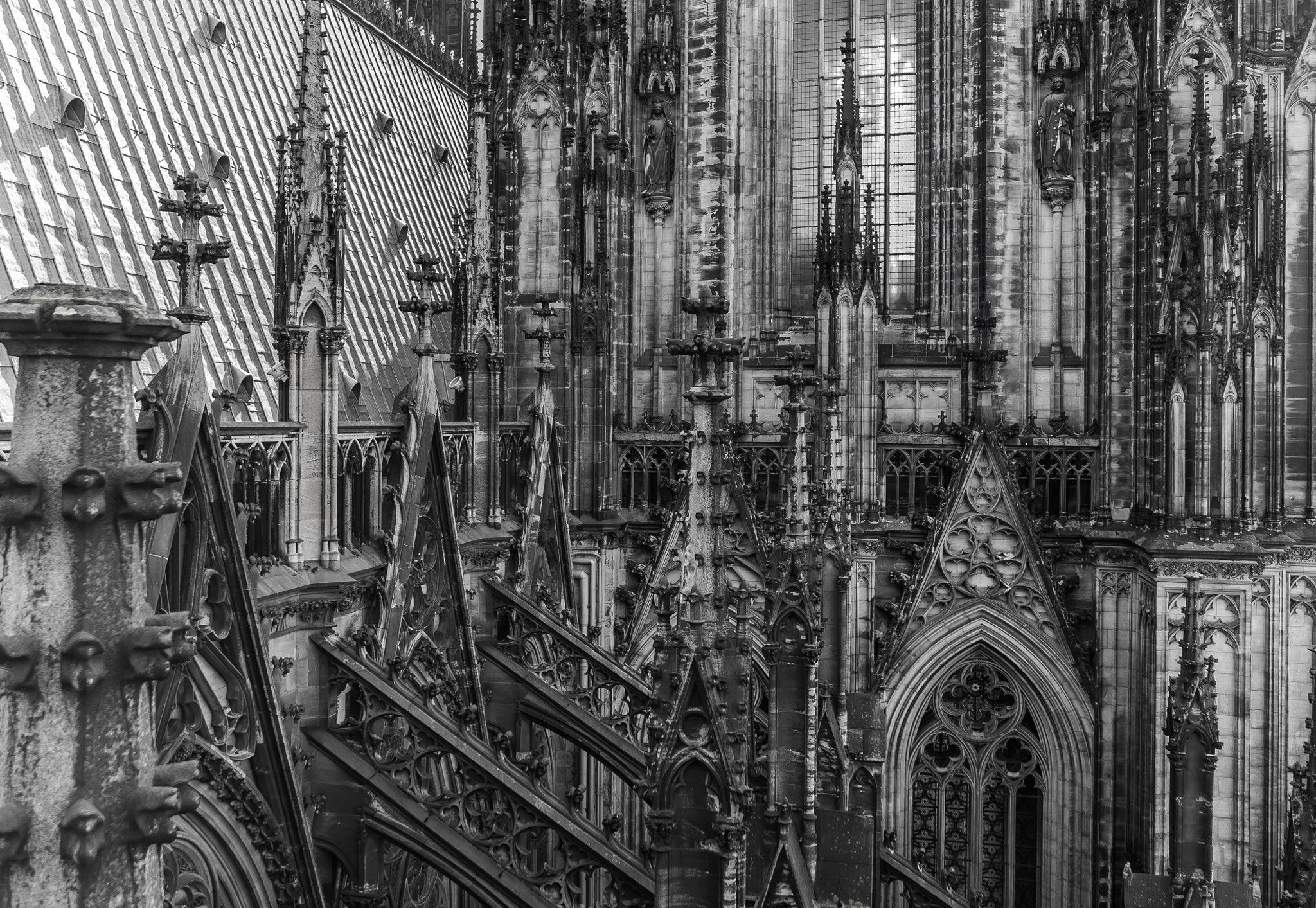 Facade Roof And Flying Buttresses Of Cologne Cathedral Fassade Dach Und Strebebogen Des Kolner Doms Facade Roof Flying Buttress Facade Cologne Cathedral