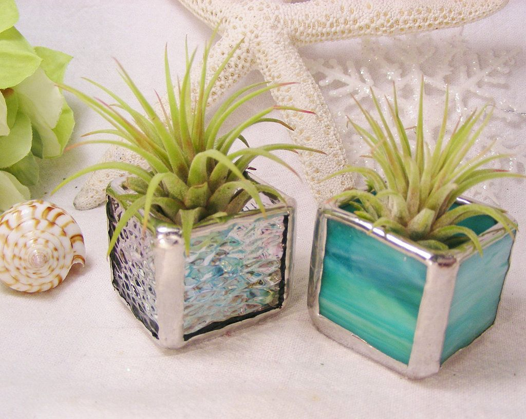 stained glass boxes planters plants and glass