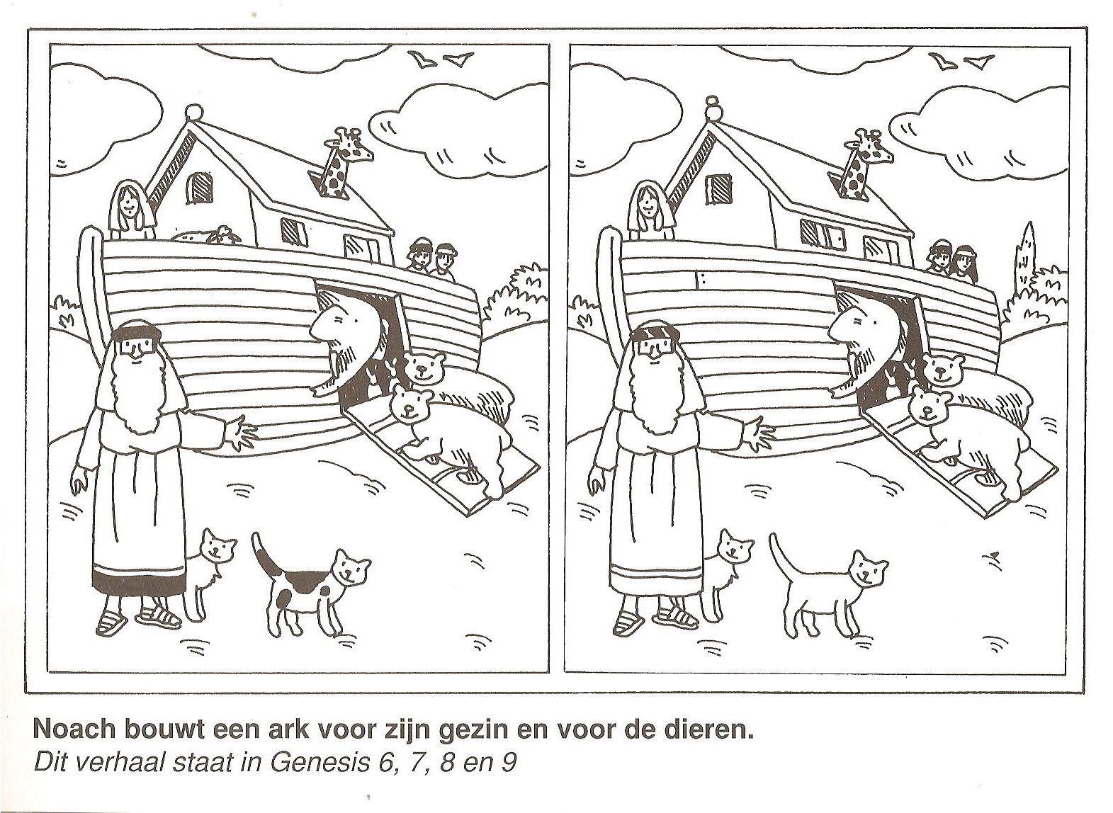 noach bouwt een ark voor zijn gezin en voor de dieren zoek de 10