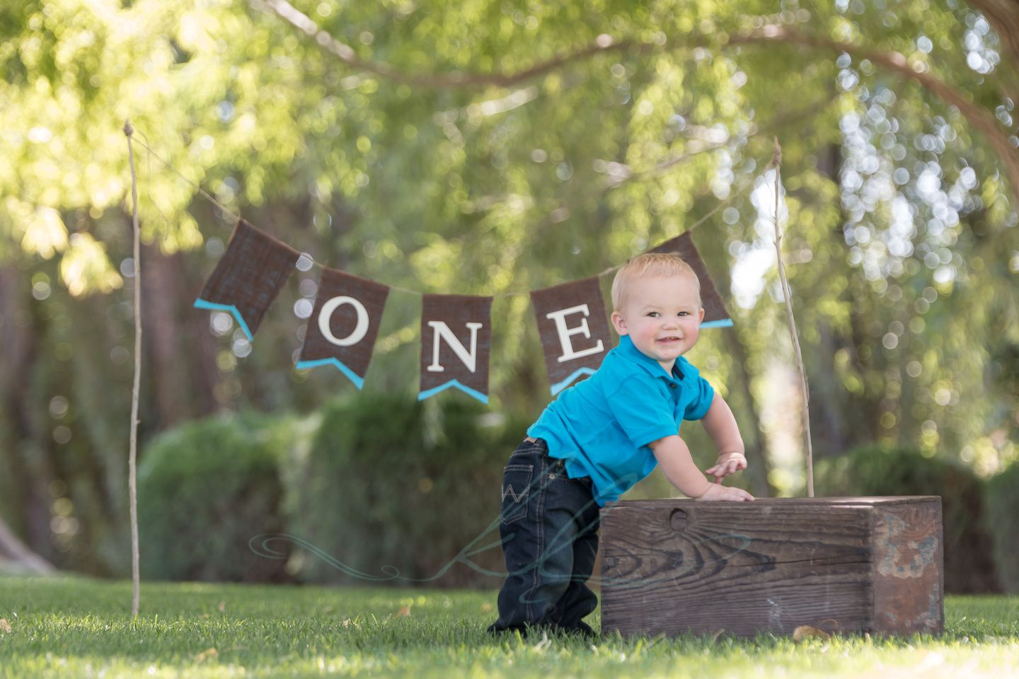 One Year Old Baby Boy Photoshoot In Park Idaho Photographers One Year Old Baby 1st Boy Birthday 3rd Birthday Pictures