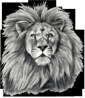 Pin De Roxanne Wallace Em Lions Tatuagens De Leao Desenho De Tatuagem De Leao Tatuagem De Leao No Ombro