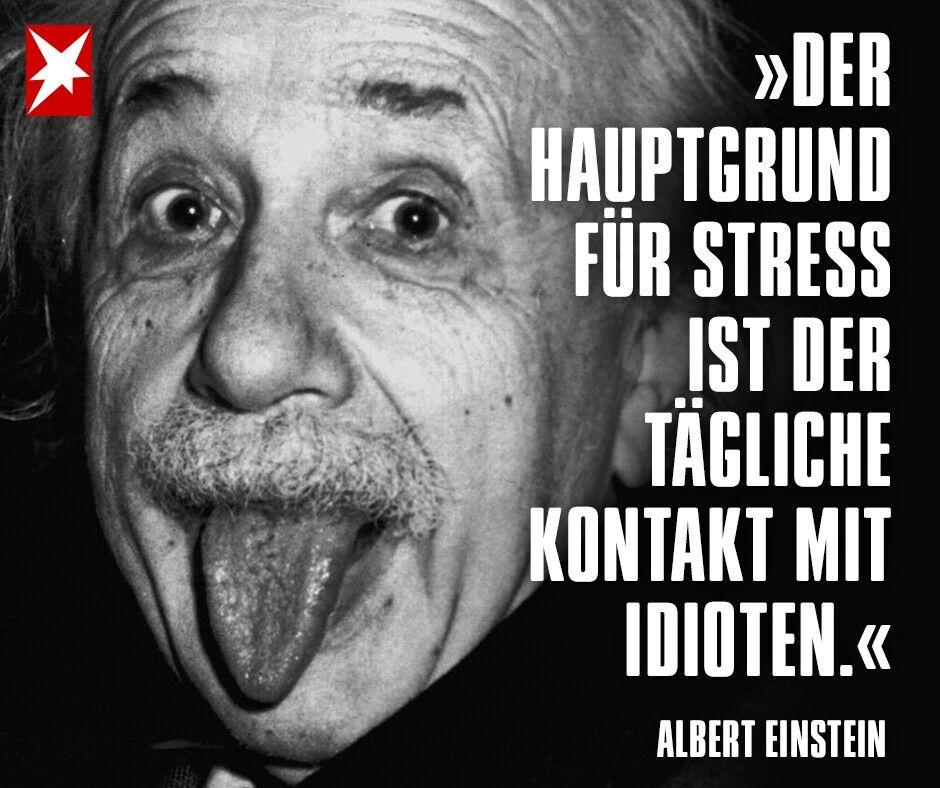Idiotie Einstein Stress Idioten