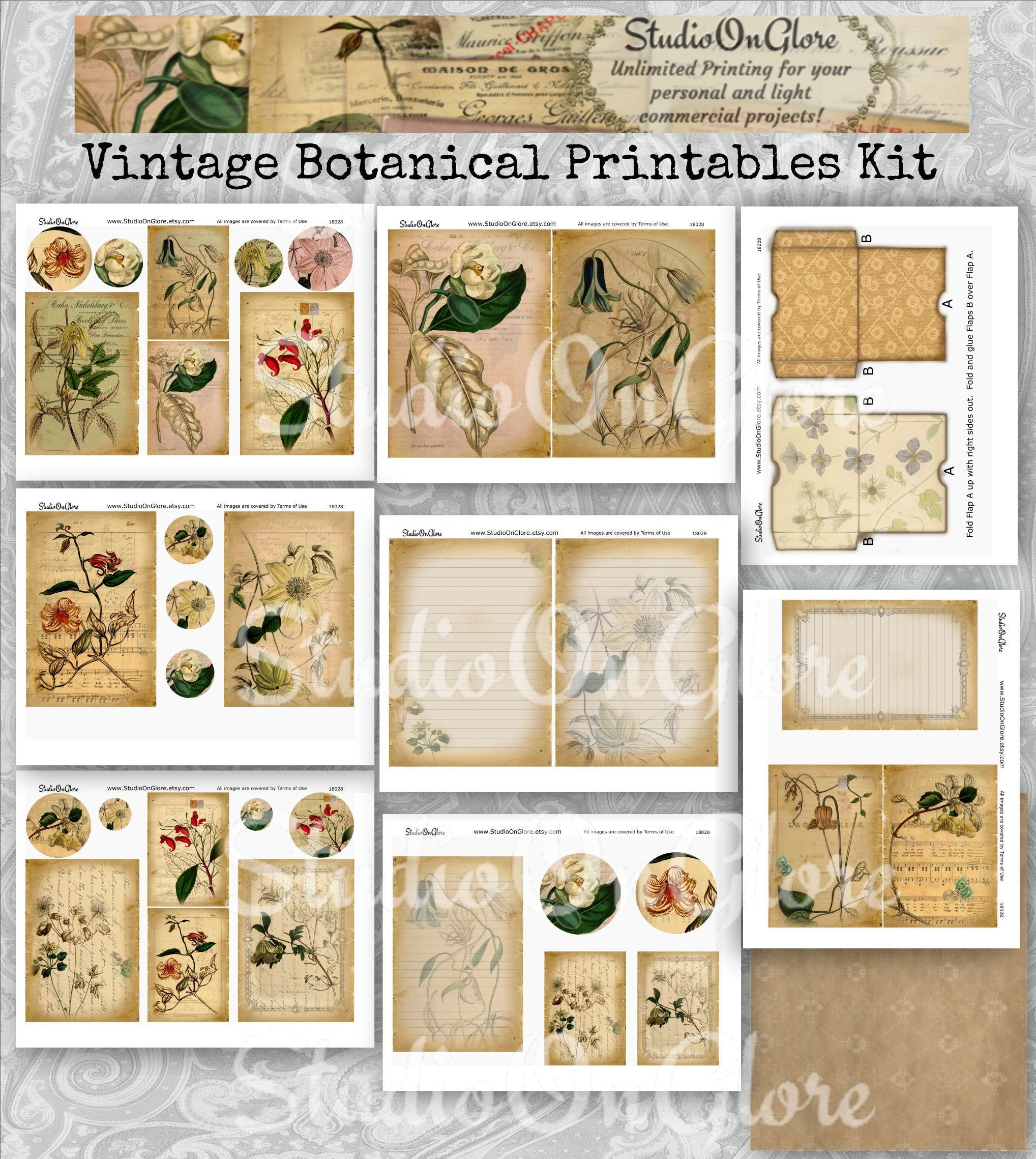Digital Collage Sheet Instant Download Vintage Botanical Berries tags Printable gift tags Sheet 113 Jewelry holders