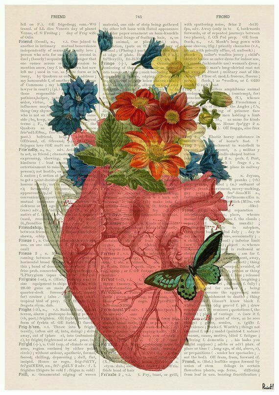 Heart Flowers Heart Beat Pinterest Wallpaper Anatomy And