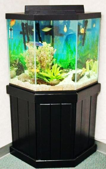 45 gallon bow front aquarium 44 gallon corner pentagon for 75 gallon fish tank dimensions