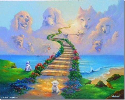 Dog Stairway To Heaven Rainbow Bridge Dog Dog Heaven Rainbow