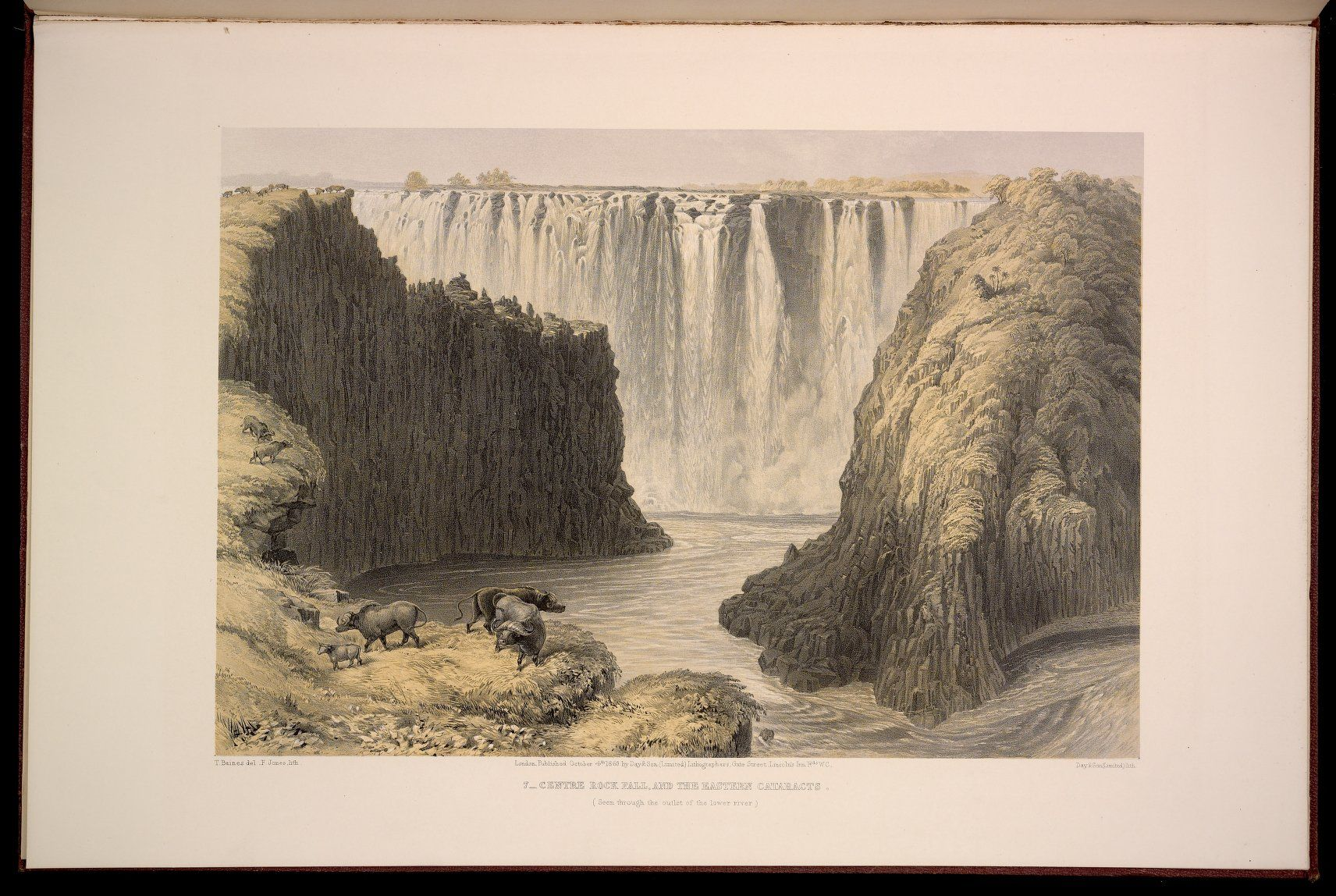 7 from The Victoria falls, Zambesi river : sketched on the spot (during the journey of J. Chapman  T. Baines) · Baines, Thomas, 1820-1875 · 1865 · Albert and Shirley Small Special Collections Library, University of Virginia.