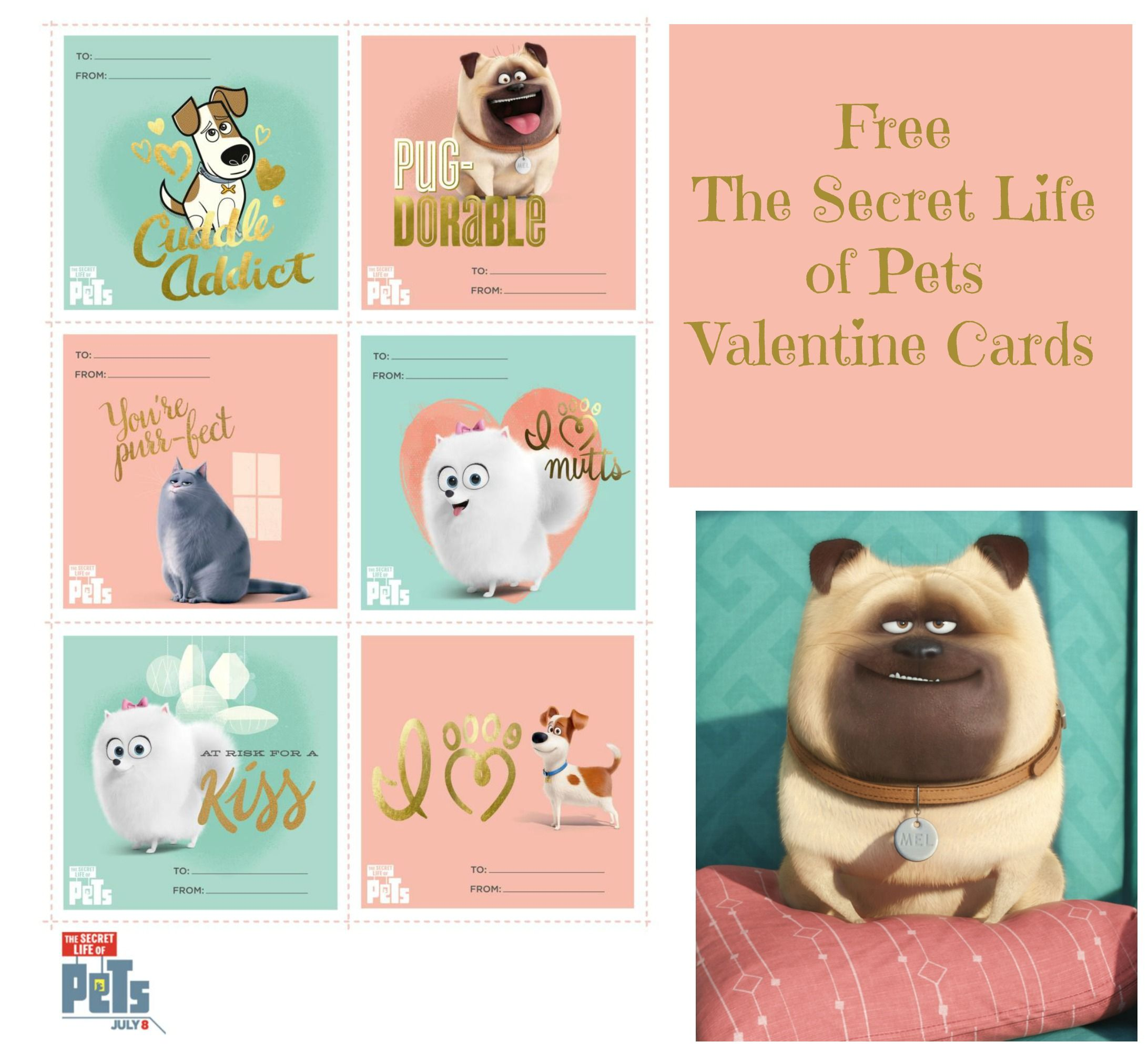 The Secret Life Of Pets Valentine S Day Cards As They Grow Up Secret Life Of Pets Valentines Cards Valentine Day Cards