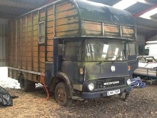 Bedford TL 2 horse box For Sale 1976  Bedford Trucks