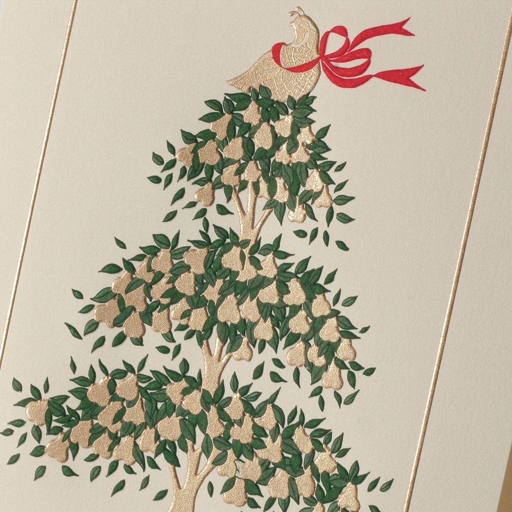 Partridge in a pear tree christmas card christmas cards partridge in a pear tree christmas card kristyandbryce Gallery