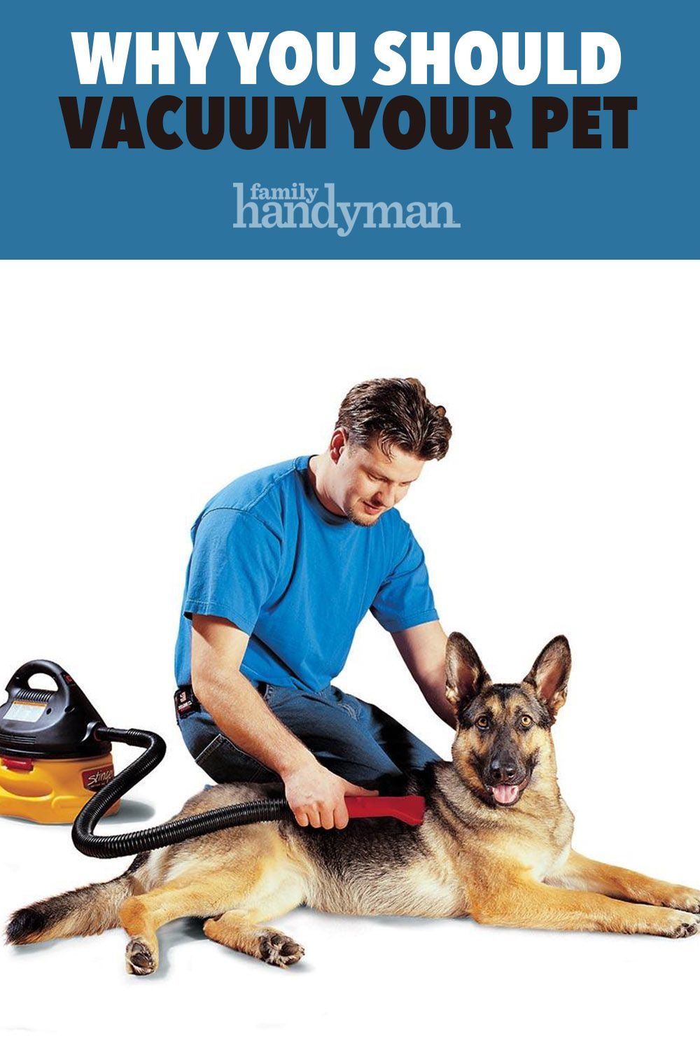 100 Essential Cleaning Hacks For Your Home Cleaning Hacks Pets Your Pet
