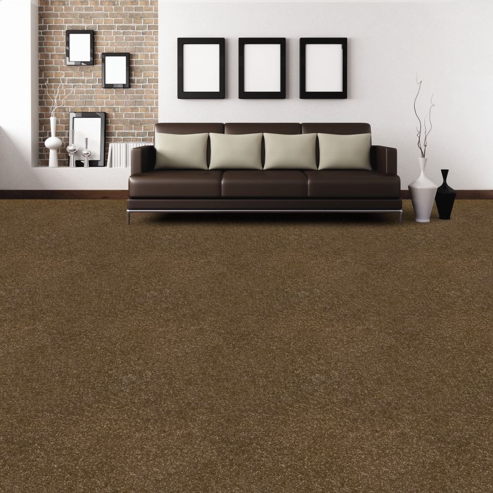 Dark Brown Carpet Neutrals Living Room