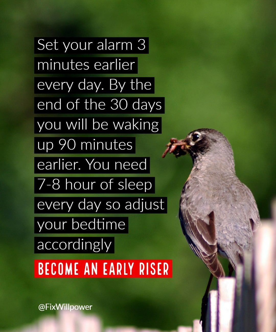 Click For More Tips Become An Early Riser In 2020 30 Day Challenge 30 Day Day