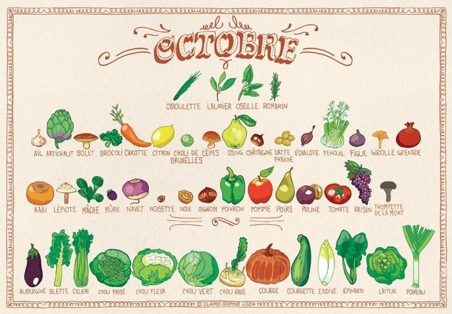 voici le calendrier des fruits l gumes d octobre saisons pinterest l gumes fruits et. Black Bedroom Furniture Sets. Home Design Ideas