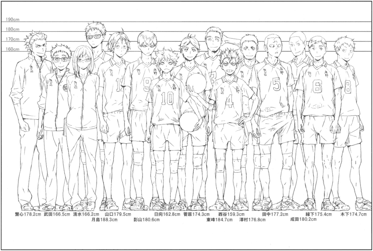 Official height chart/comparison of the entire Karasuno