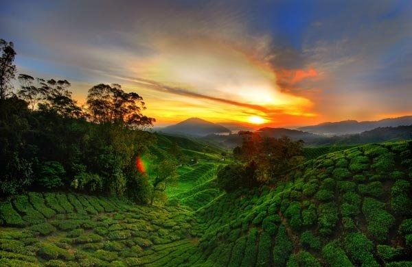 This Is A Landscape In Cameroon Cameron Highlands Africa Travel Beautiful Sunset