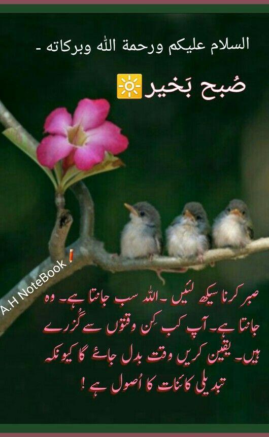 السلام عليكم ورحمة الله وبركاته A H Small Birds Bird Canvas Beautiful Words