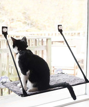 This Cat Windowsill Bed Is Perfect Zulilyfinds Cat Bed Cat Window Cats