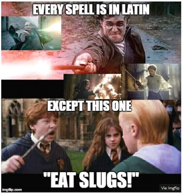 What S Your Favorite Spell Then Follow Me Wizardpost S For More Clips And Pics Harry Potter Spells Harry Potter Jokes Harry Potter Puns