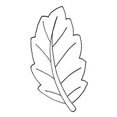 leaf coloring pages banana leaf - Leaves Coloring Pages
