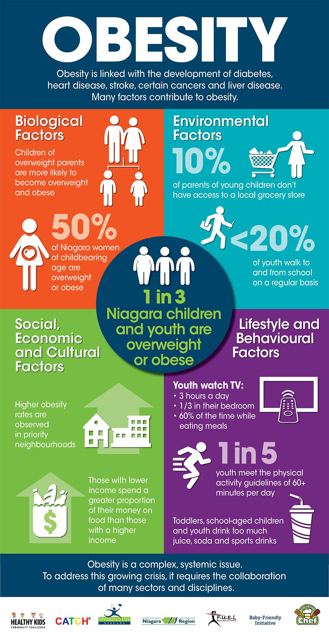 ICONEarlyPhaseServices Childhood obesity, Obesity