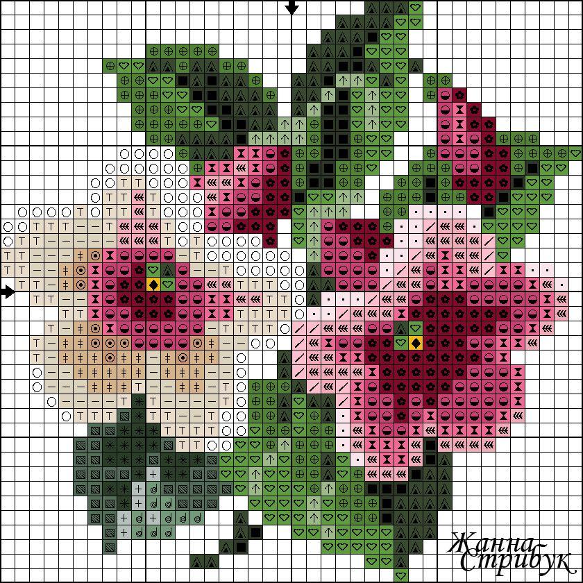 Pin De Rosa Lopez En Punto De Cruz Pinterest Punto De Cruz Rosas