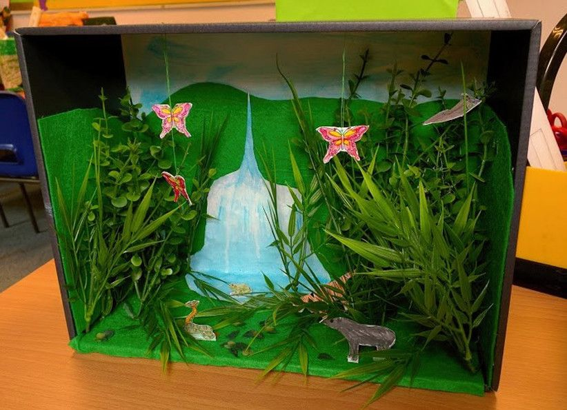 Making a rainforest diorama is a fun way to learn about ...