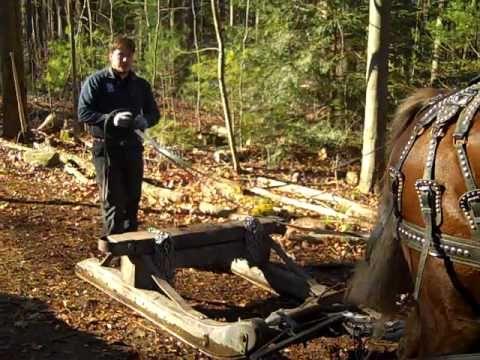 Go Devil Logging Sled Some Tools Pinterest Sled Its Cold