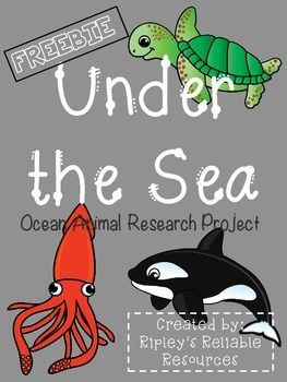 Ocean Animal Research Project Everything You Need Research Projects Ocean Animals Animal Report