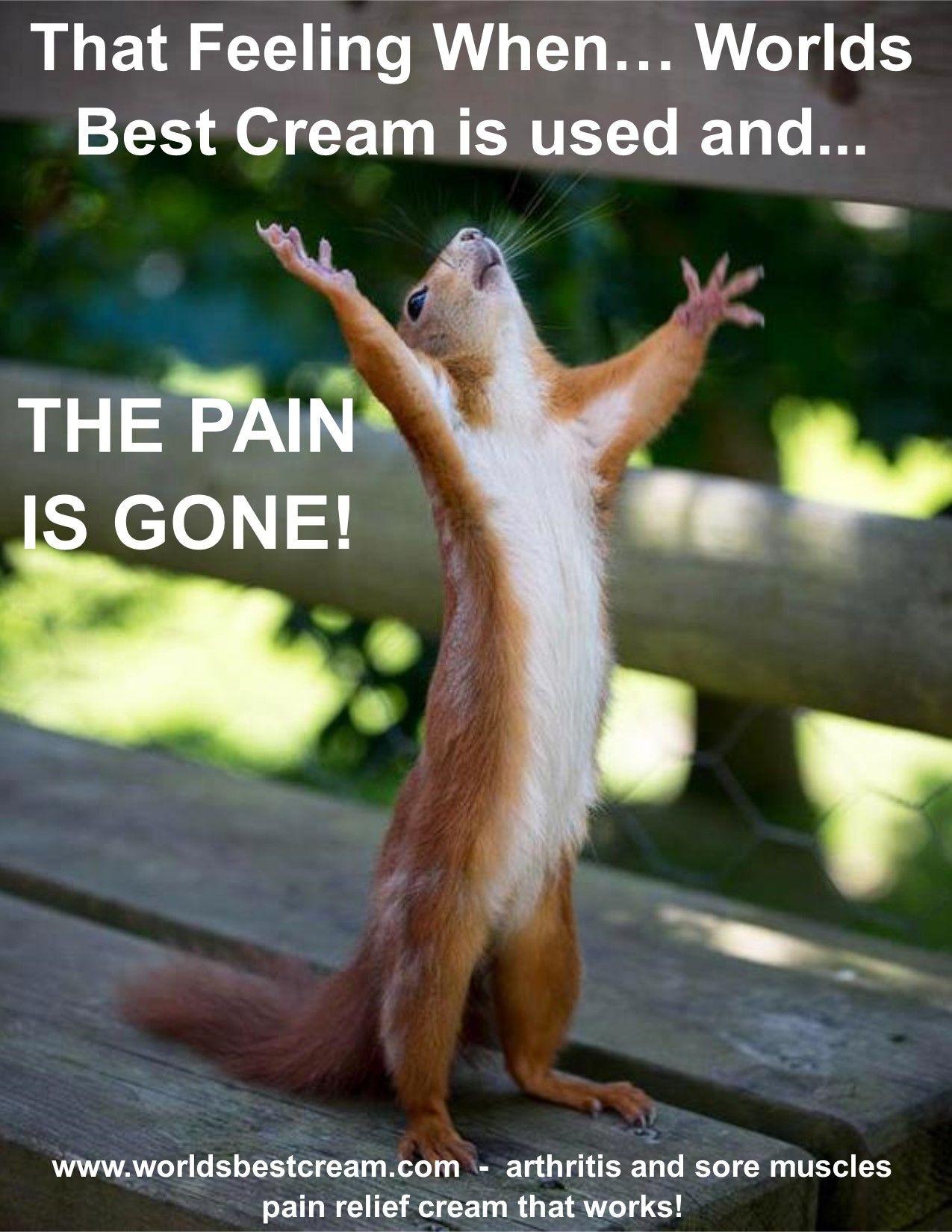 Pain Relief Meme  Worlds Best Cream