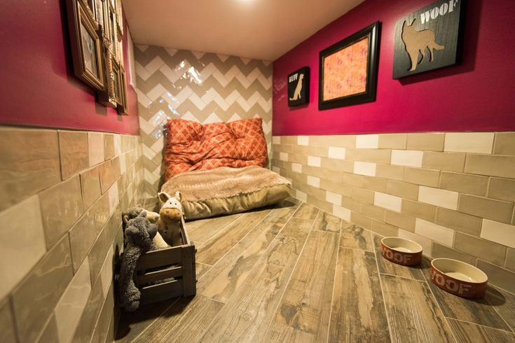 4 Simple Tips For Dog Grooming at Home Pet hotel, Luxury