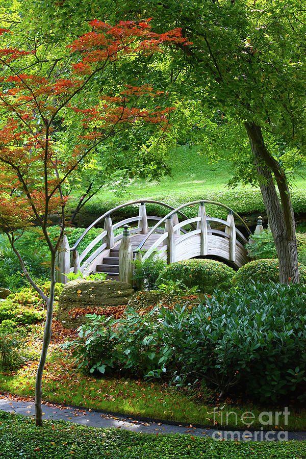 Fort Worth Botanic Garden, Texas #Texas   Garden   Pinterest   Fort ...