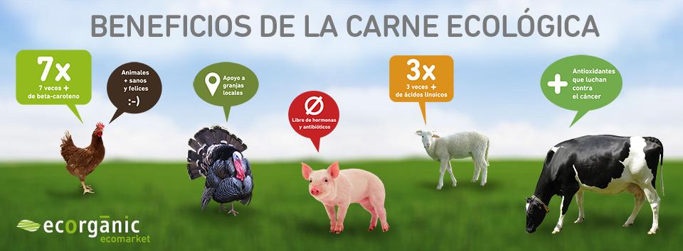 Beneficios De La Carne Ecológica Carne Beneficios Bio