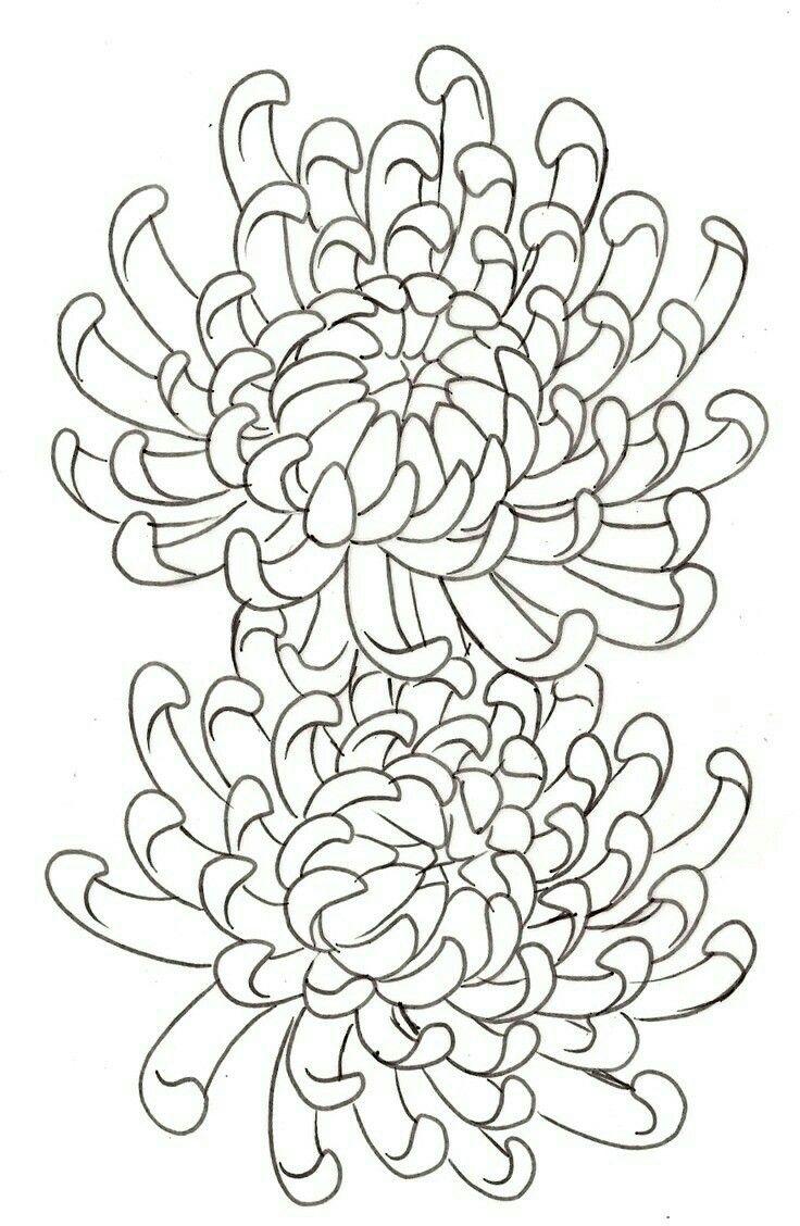 Crisântemos Flora Pinterest Tattoo Tatoo designs and Irezumi