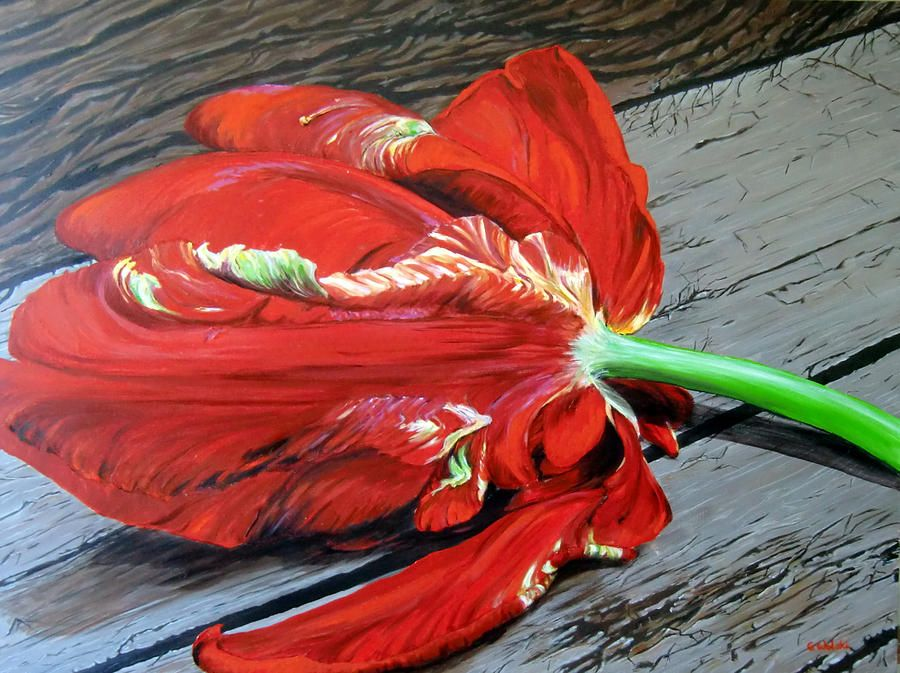 Magnificent Red Painting  - Magnificent Red Fine Art Print