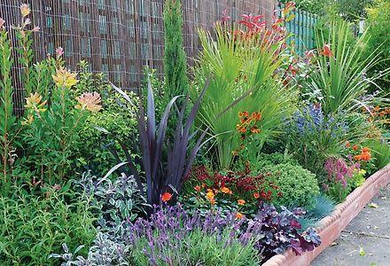 Mediterranean Border Contemporary Garden Garden Design