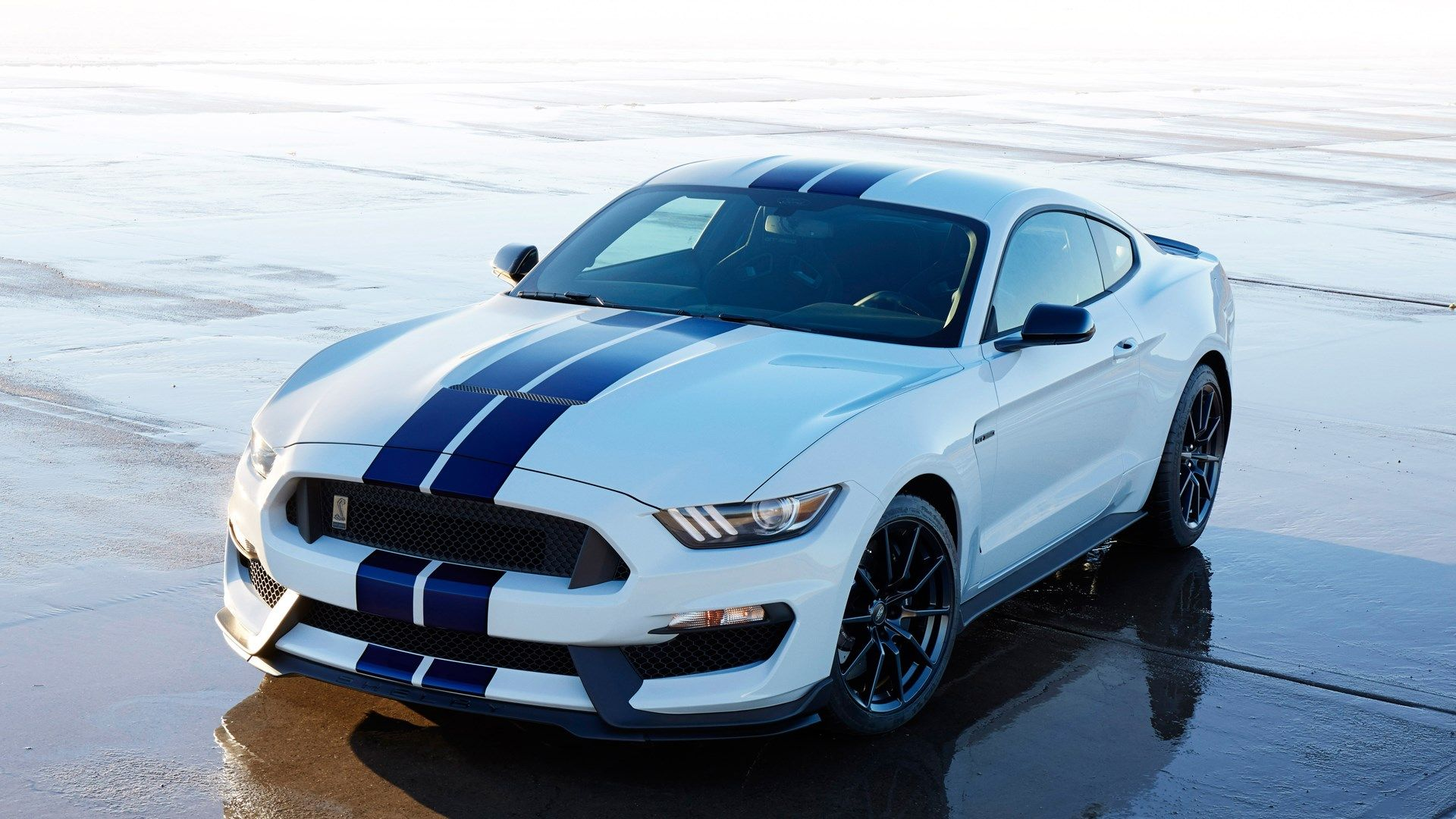 Background Shelby Gt350 Mustang 2015 In High Resolution