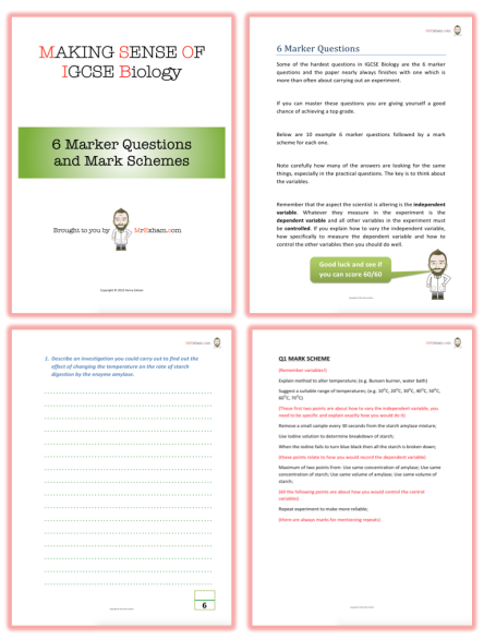 Best Resume Writing Software Prepossessing Best Open Source Creative Writing Software  Buy An Essay .