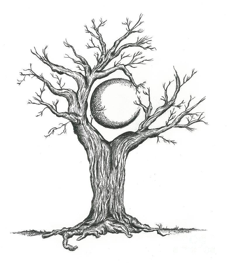 this drawing is of a crescent moon surrounded by the tree and branches hovering over it